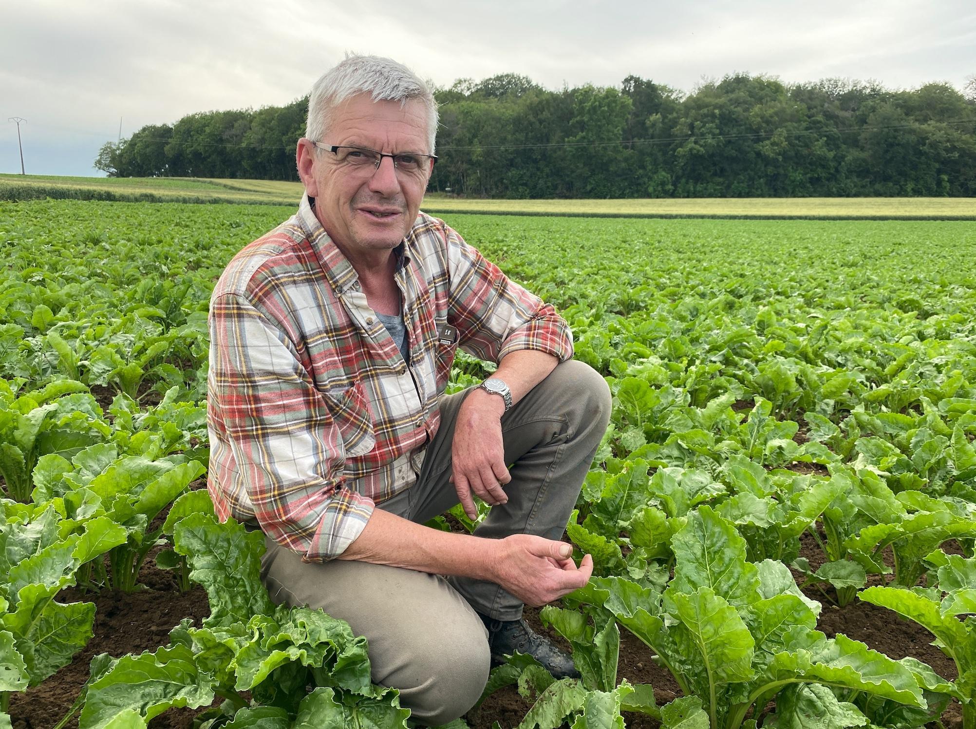 Christophe Andrieux cultive entre 5 et 6 ha de betteraves fourragères et en récolte plus de 120 ha pour le compte de ses clients