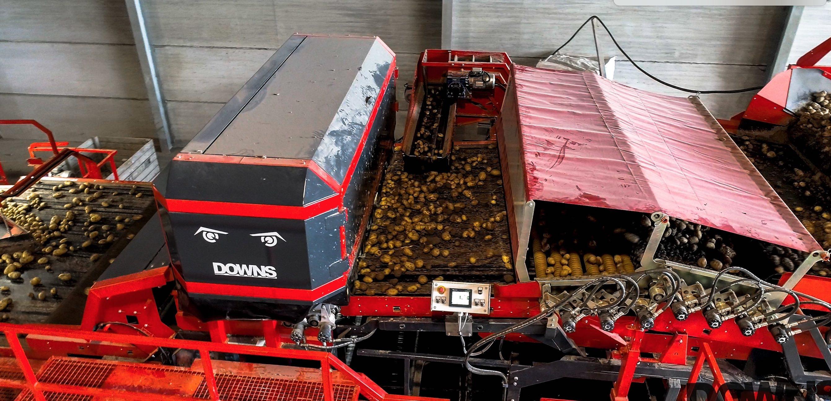 Le recours à des caméras couplées à des algorithmes d'intelligences artificielles autorise une cadence de tri de 100 t/h tout en caractérisant les pommes de terre non lavées en sortie du trieur (Crédit photo : Downs)