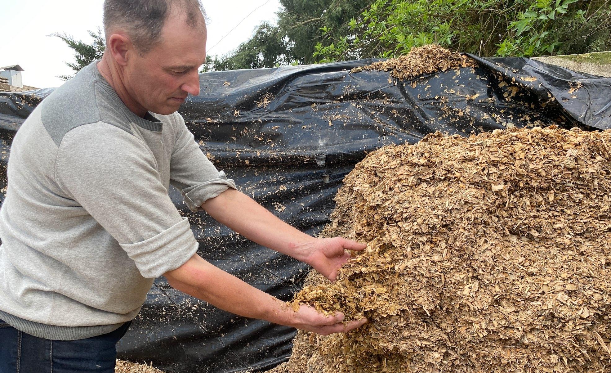 Le maïs associé à la légumineuse lablab participe à l'autonomie alimentaire de l'élevage